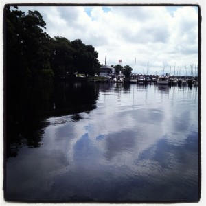 Photo taken on the dock of Mandarin Park @Julington Creek after a perfect summer rain.
