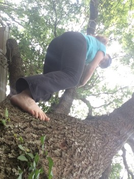 Relearning to climb